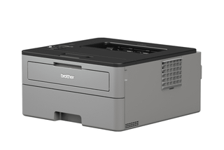 Brother-HL-L-2530DW-Wireless-Mono-Laser-Printer