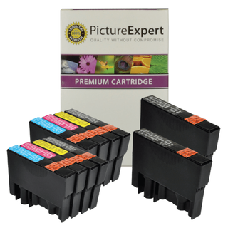 compatible epson ink cartridges 10 pack (picture expert)