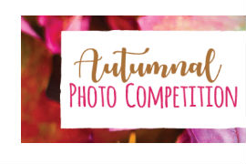 Autumn-photo-competition
