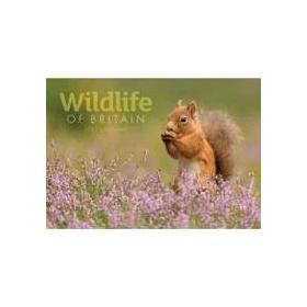Wildlife- of- Britain- A4- 2022- Calendar