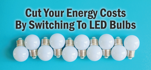 cut your energy costs day with our led bulbs
